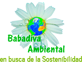 babadiva
